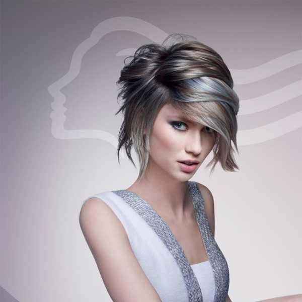 estilos de cabello gris inspirador para las mujeres que tratan de 20.160.141