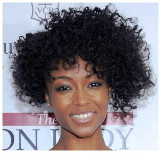 natural rizado peinados natural rizado peinados para niñas